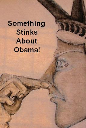 something stinks obama