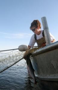 apalinfishing